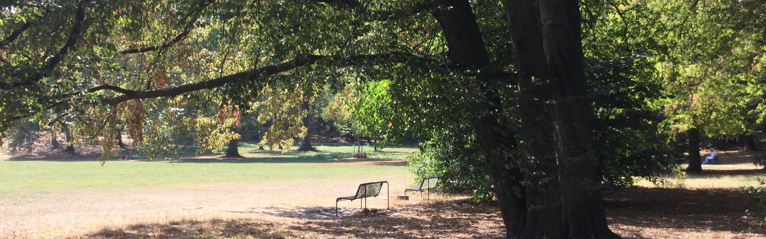 Die Praxis am Stadtwald